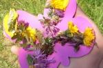 bunte Schmetterlinge basteln